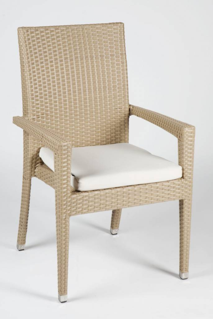 Santiago Dining Chair With Arms Patio Furniture Lawn