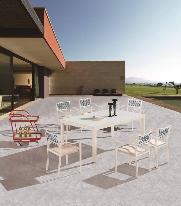Hyacinth Dining Set for 6 with Chairs with Arms