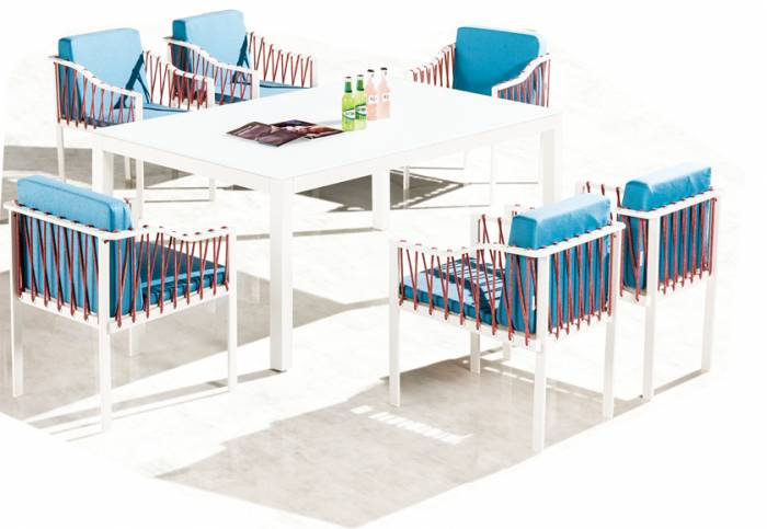 Hyacinth Dining Set for 6 with Sidestraps