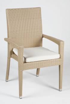 Santiago Dining Chair With Arms