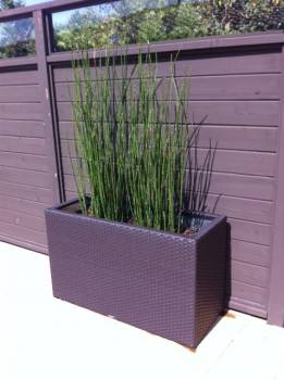 Accessories - Woven Planters - Planter
