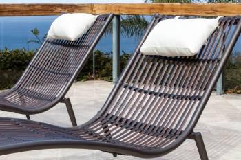 Kitaibela Chaise Lounge